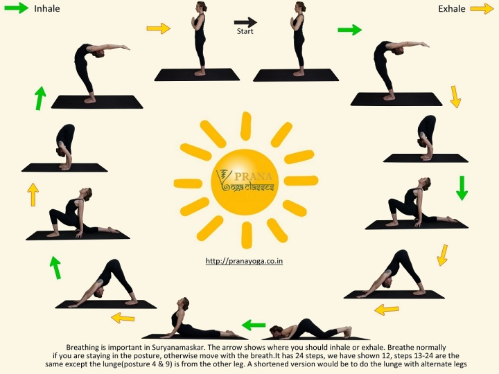 surya-namaskar-hatha-yoga-sun-salutation-medium
